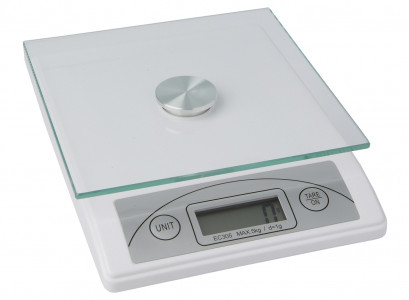 Scale Electronic Glass